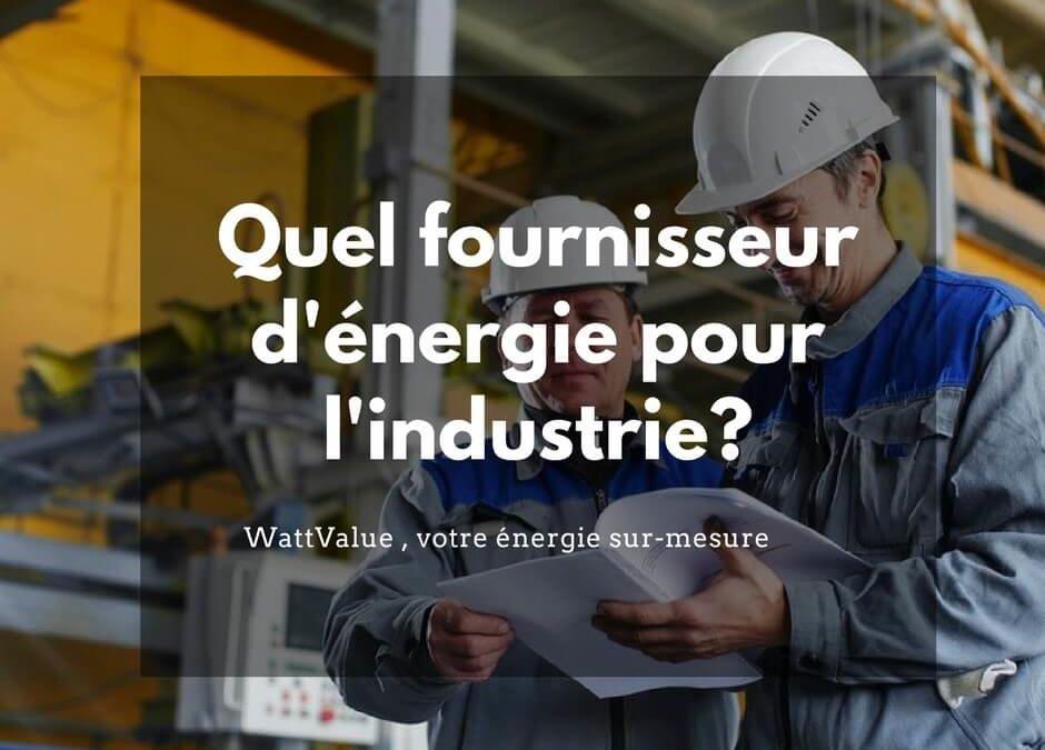 Quel fournisseur d'énergie pour l'industrie ?