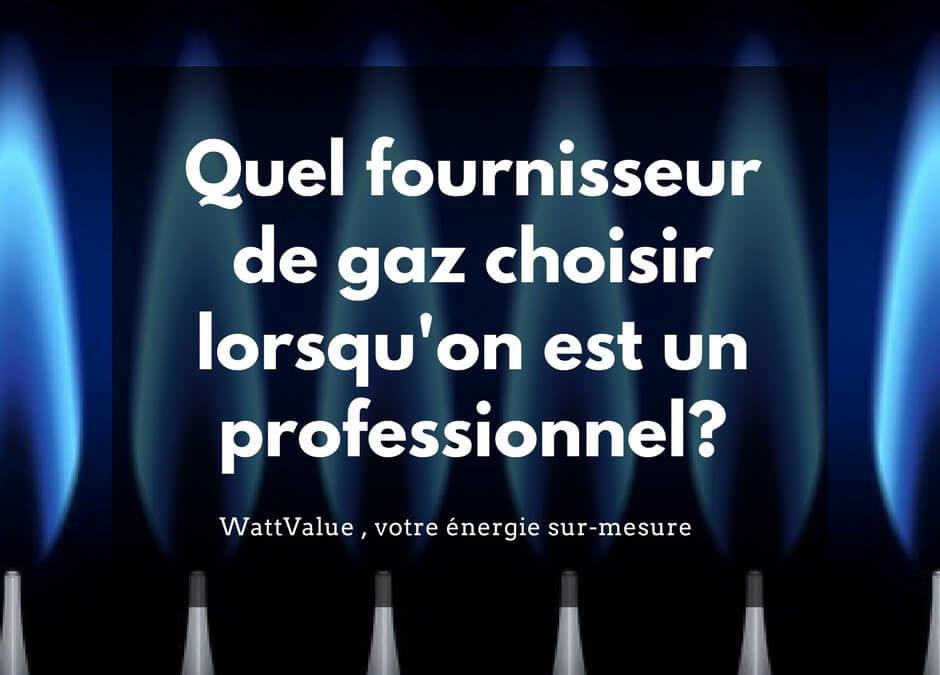Quel fournisseur de gaz choisir lorsqu'on est un professionnel?