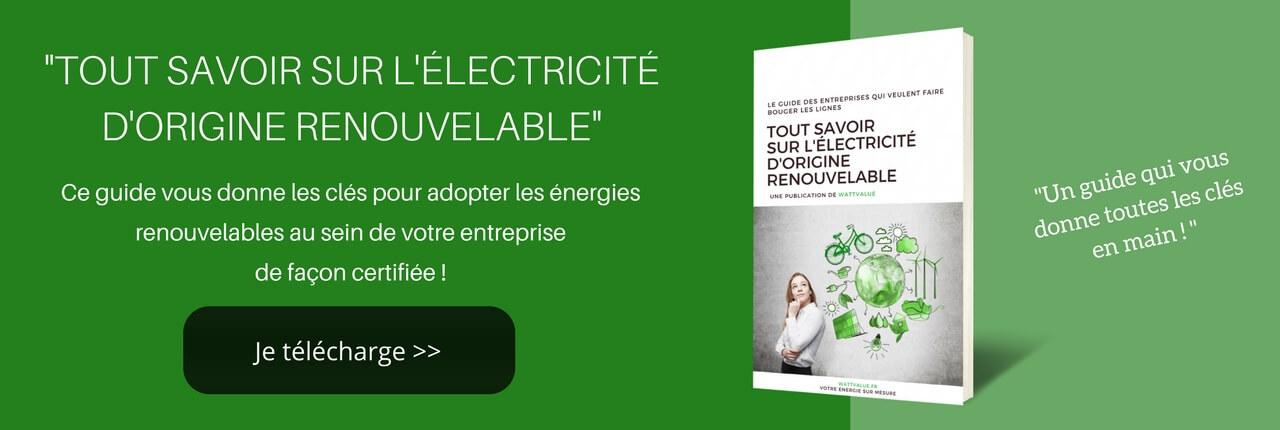 électricité d'origine renouvelable