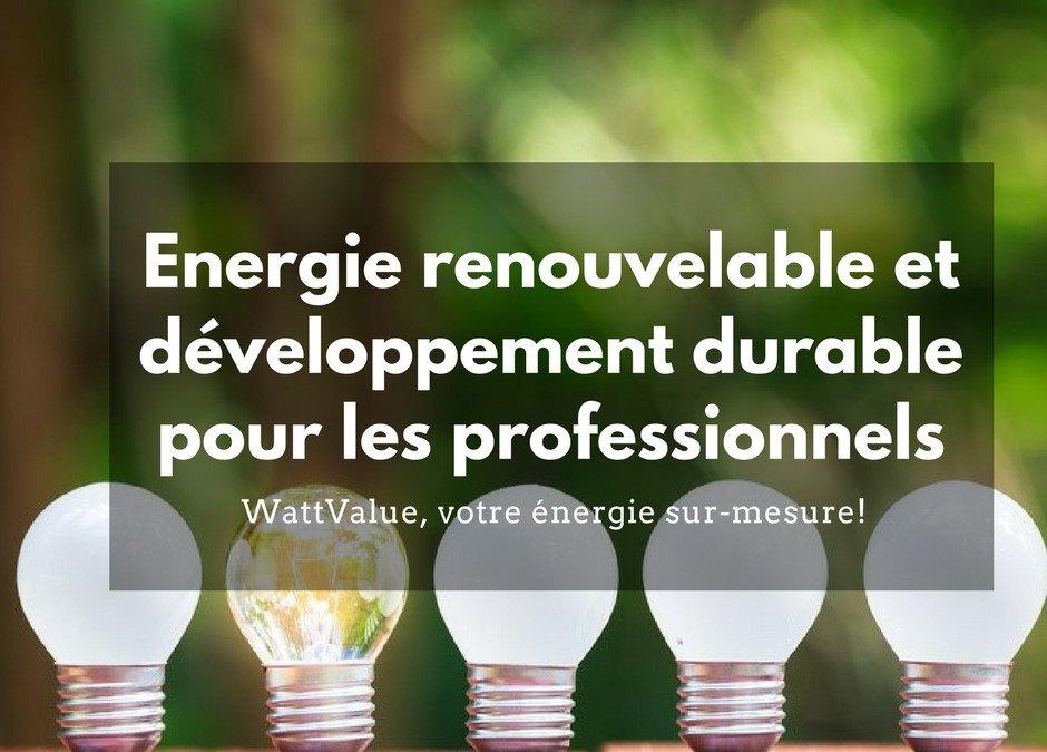 Energie renouvelable et développement durable pour les professionnels