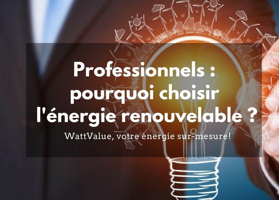 Professionnels : pourquoi choisir l'énergie renouvelable ?