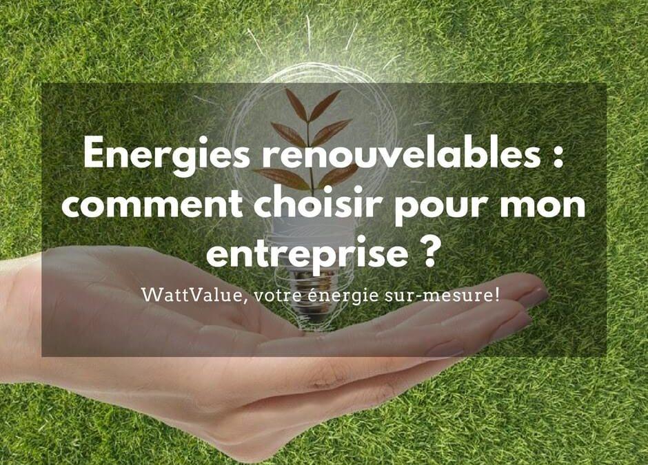 Energies renouvelables : Comment choisir pour mon entreprise ?