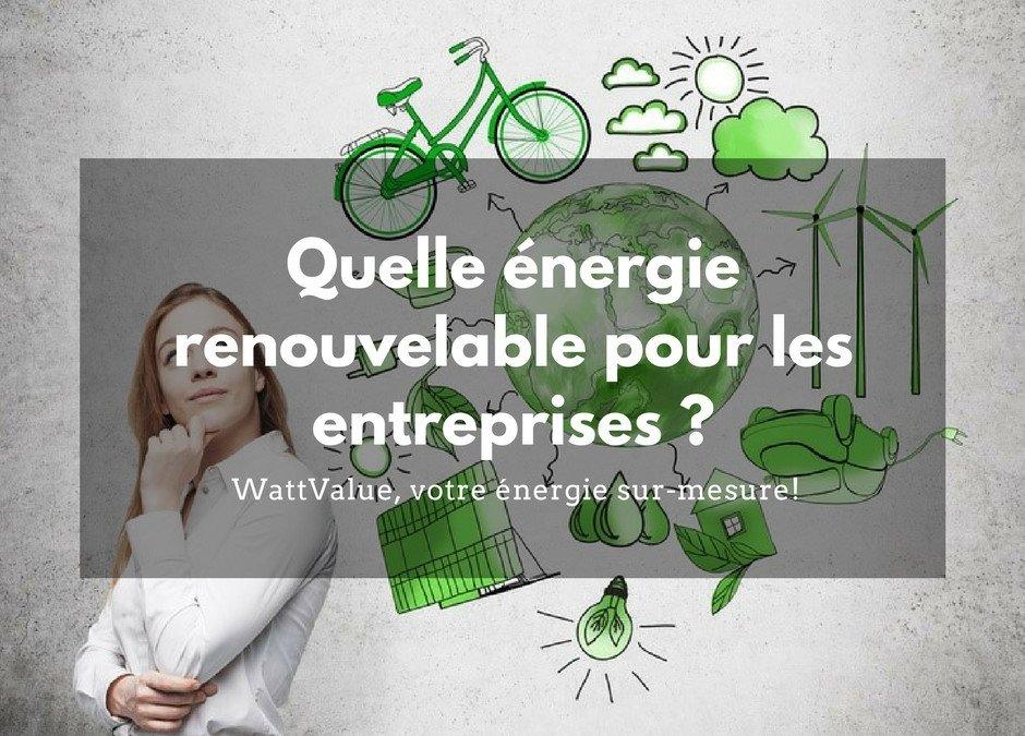 Quelle énergie renouvelable pour les entreprises ?