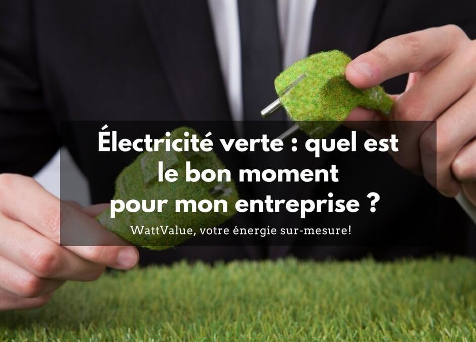Électricité verte : quel est le bon moment pour mon entreprise ?