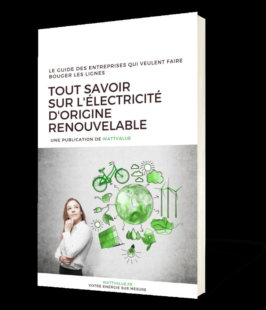 énergie renouvelable book