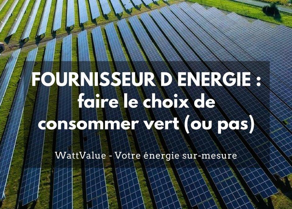 FOURNISSEUR D ENERGIE : faire le choix de consommer vert (ou pas)