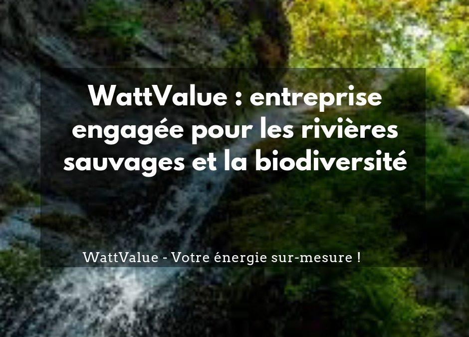 WattValue, une entreprise engagée pour les rivières sauvages et la biodiversité