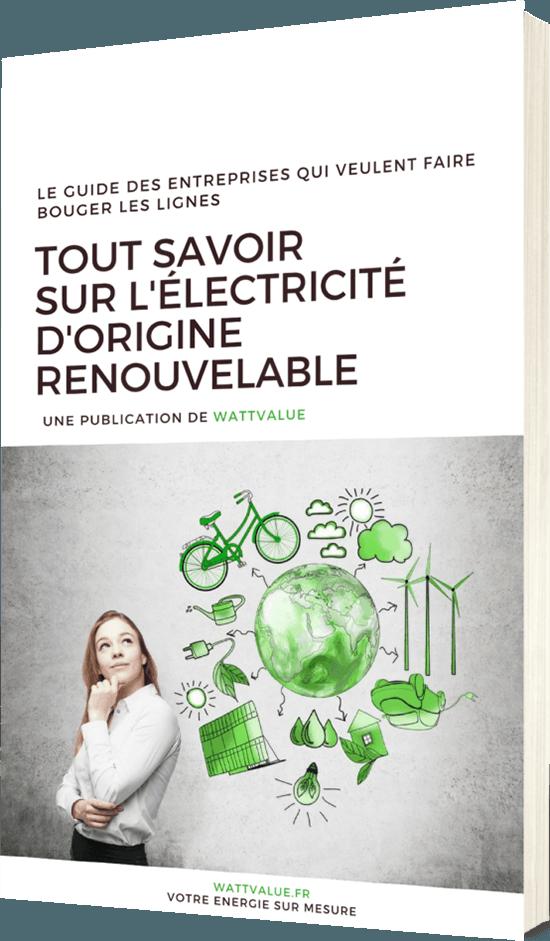 Guide WattValue Tout savoir sur l'électricité d'origine renouvelable