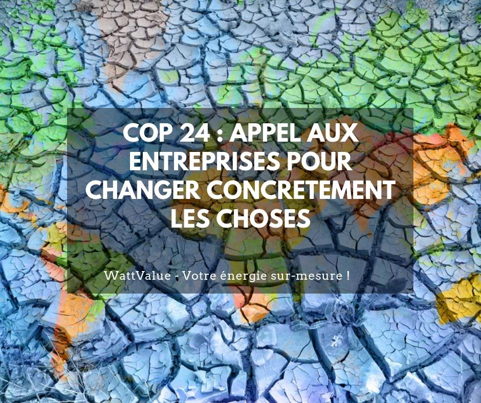 COP 24 : appel aux entreprises pour changer concrètement les choses
