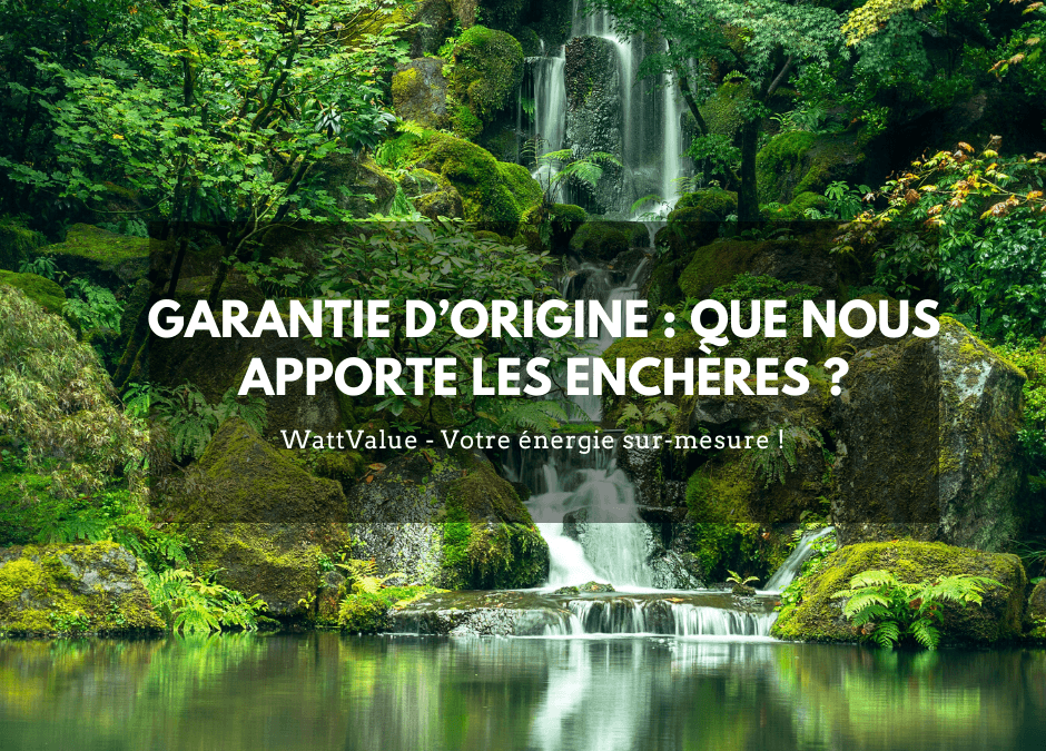 GARANTIE D'ORIGINE : QUE NOUS APPORTE LES ENCHÈRES ?