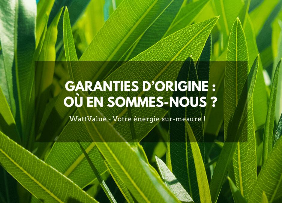 GARANTIES D'ORIGINE : OÙ EN SOMMES-NOUS ?