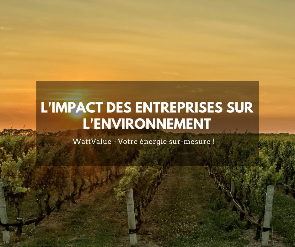 L'impact des entreprises sur l'environnement