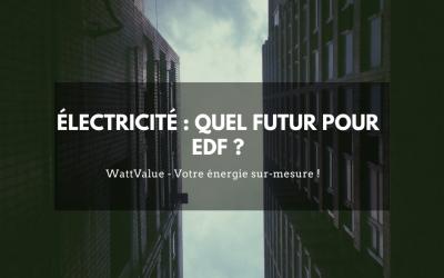 Électricité : quel futur pour EDF ?