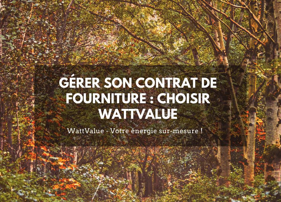 Gérer son contrat de fourniture : choisir WattValue