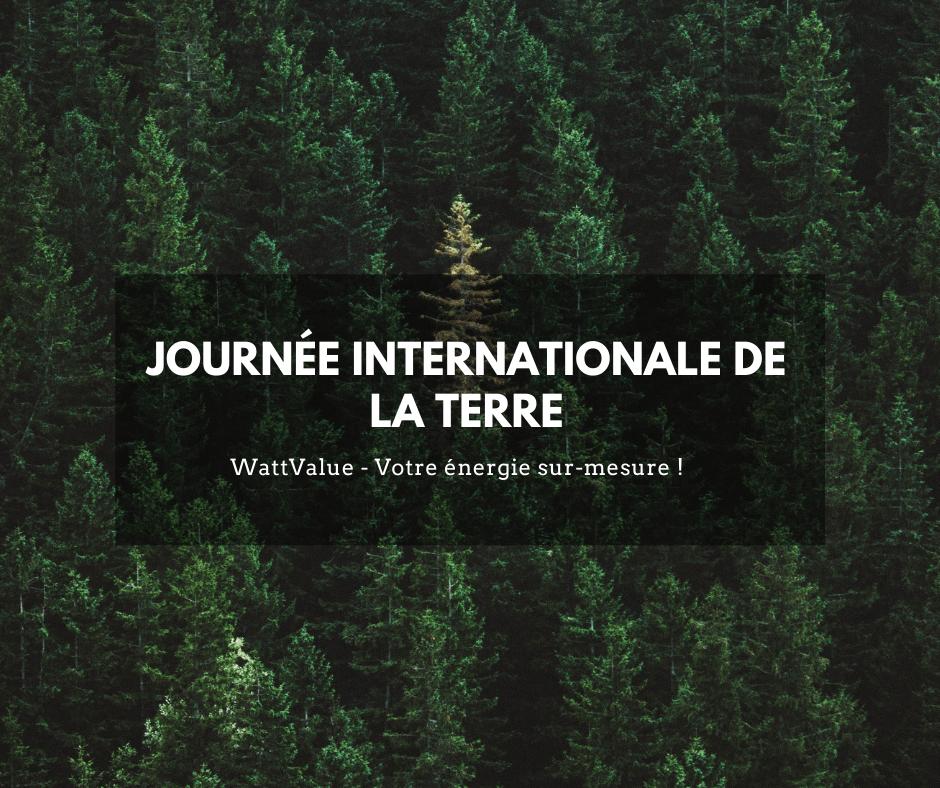 image - forêt journée internationale de la terre